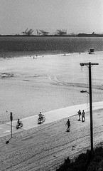 riding in Long Beach, CA (carlfieler) Tags: longbeach beach ocean shore landscapes waterscapes streetphotography canonf1 canonfd fd55mm seagullfilm monochrome analog 35mmfilm selfdeveloped bw bnw