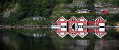 41/52 (wirsindfrei) Tags: 52in2017challenge 4152 norway reflection reflections fjord sea nikond5300 nikon pair landscape building symmetry lake tree panorama norwegen