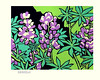Garden lupine (Japanese Flower and Bird Art) Tags: flower garden lupine lupinus polyphyllus fabaceae saburo miyata modern woodblock print japan japanese art readercollection