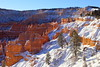 IMG_2465 Bryce Amphitheater after Snow Storm, Bryce Canyon National Park (ThorsHammer94539) Tags: bryce canyon national park