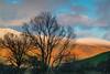 Look up to Little Man (alan.dphotos) Tags: lake district derwent keswick cumbria water hills mountain bracken golden snow sky bridge ullswater mist fog river cat bells sunlight sunrise sunset
