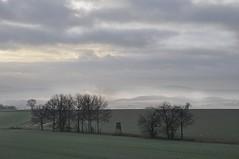 zugedeckt (Uli He - Fotofee) Tags: ulrike ulrikehe uli ulihe ulrikehergert hergert nikon nikond90 fotofee nebel plätzer burghaun weg meinweg himmel haunetal