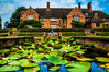 Lilly Pad (Tony Shertila) Tags: england walterbrierley york artsandcrafts britain building estate europe goddardshouse holiday house nationaltrust outdoor yorkshire pond lilly water sky cloud architecture unitedkingdom gbr