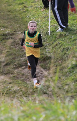 img_0121 (Brothers Pearse AC) Tags: juveniles phoenixpark 2012 crosscountry dublincrosscountryleague xcleaguerace4