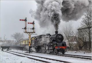 80080. Winter departure .........