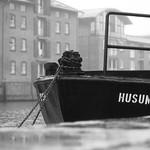 Husum - Die graue Stadt am Meer thumbnail