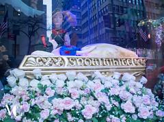 Christmas in New York-1 (matthewcohen93) Tags: saks saksfifthavenue saks2017 storefront nycstorefronts nycchristmasdisplays nyc nycphotography nikon nikond7100 night nightphotography newyorkcity ny newyork christmasinnewyork christmasinnyc holidaynewyork holidaysinnewyork holidayshops december december2017 2017 newyork2017 newyorkcity2017 new stores shoppes shops happyholidays lights