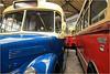 Autobus 72 et autobus A.M.N. Leyland 955, Musée des transports en commun de Wallonie, Liège, Belgium (claude lina) Tags: claudelina belgium belgique belgïe musée museum liège muséedestransportsencommundewalonie bus autobus