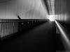 main-courante (alain.winterberger) Tags: gare malley prilly trainstation architecture lignes lines abstrait abstract structure urbain urban géométrique diagonale batiment barrière perspective noiretblanc noirblanc blackwhite bnw nb panasonic lumix gx80 20mm suisse switzerland schweiz svizerra