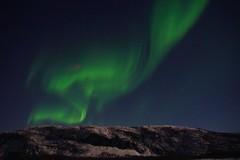 Green Dreams (little_frank) Tags: northernlights alta norway finnmark dream auroraborealis polarlight nature auroraboreale nordlicht
