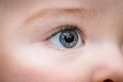 Will - 11 months old (Katherine Ridgley) Tags: toronto torontobaby baby babyboy cutebaby eye eyes blue blueeyes macro detail