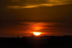 _MG_6996 (Jerseket) Tags: sun sol disco solar sunset atardecer ocaso sky cielo sigma sigmalence canont3i canon argentina
