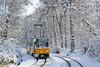 3003 - 10 (CometBG) Tags: tram tramwaj strassenbahn sofia vehicle outdoor snow tatra ckd t6a2