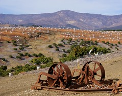 Run, Run, Run... (nedlugr) Tags: california ca usa mountains santabarbaracounty avacadoorchard farmequipment farmimplements rust scorched