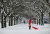 The Girl in Red (Ursula Rodgers Photography) Tags: girl red snow trees winter cold eatonpark norwich england uk norfolk