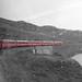Bernina Tour Train