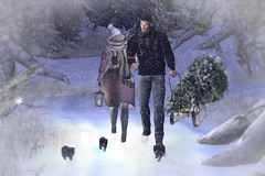 #552 (Tia Westminster 2Life4u Blog Owner) Tags: wintertrend theliasoncollaborative catwa maitreya focusposes woh gift hunt mesh runaway poses animation puppies dogs animals snow winter sleigh scarf hat female couple woman men male