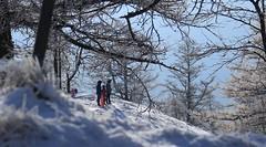 une famille qui fait du bob (bulbocode909) Tags: valais suisse montchemin chezlarze familles gens bob nature montagnes neige givre brume bleu automne orange