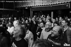 2017 Bosuil-Het publiek bij Joost de Lange en Band Of Friends 17-ZW
