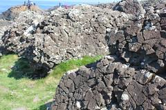 IMG_3657 (avsfan1321) Tags: ireland northernireland countyantrim unitedkingdom uk giantscauseway causewaycoast wildatlanticway basalt rock stone blackbasalt column columnarjointing columnarbasalt ocean atlanticocean landscape