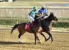 "2017-12-26 (30) r3 Christian Hiraldo on #1 My Sweet Autumn (JLeeFleenor) Tags: photos photography maryland md horse jockey جُوكِي ""赛马骑师"" jinete ""競馬騎手"" dżokej jocheu คนขี่ม้าแข่ง jóquei žokej kilparatsastaja rennreiter fantino ""경마 기수"" жокей jokey người horses thoroughbreds equine equestrian cheval cavalo cavallo cavall caballo pferd paard perd hevonen hest hestur cal kon konj beygir capall ceffyl cuddy yarraman faras alogo soos kuda uma pfeerd koin حصان кон 马 häst άλογο סוס घोड़ा 馬 koń лошадь laurelpark marylandraces races outdoors outside winter cold bay"