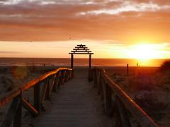 Un año que se va (jantoniojess) Tags: cádiz zaharadelosatunes playa beach sunset puestadesol ocaso atardecer atardecerenlaplaya españa spain andalucía perspectiva perspective sun landscape panasoniclumixlx100 cloud nubes