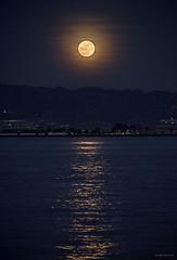 Wolf Moon @ Oakland Hills 海上升明月,天涯共此時 (GeorgeTsai 168) Tags: fullmoon moon reflection