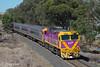 Pretty and Purple (Henry's Railway Gallery) Tags: n463 nclass emd diesel clyde albury euroa 8605 vlinepassenger passengertrain
