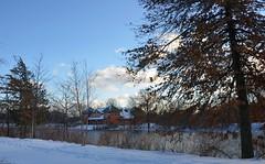 Christmas 2017 - 7840 (bix02138) Tags: christmas2017 christmas 2017 december25 landscapes winter snow ice charlesriver cambridgema ©2017lewisbrianday