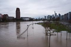 2018 Hochwasser an der Weseler Werft in Frankfurt (mercatormovens) Tags: frankfurt city hochhaus main ezb ostend hochwasser