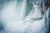 baby its cold out there (CarinaMcKee) Tags: nikon niagara falls ice frozen cold
