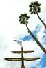 Knabe Park Catalina Island (gametimeplay) Tags: gametimecatalinaisland playground catalinaisland ca usa playgroundequipment pirateship customplay themedplay