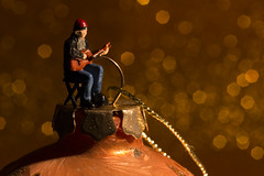 All is bright (alideniese) Tags: smileonsaturday xmasdeco macro closeup bokeh christmasdecoration bauble christmasball decoration littleperson man guitarist singer smallperson miniatureperson figurine christmas festive holidayseason stage caroler alideniese bright light colourful