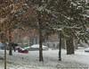 Cherish the Time (Lou Musacchio) Tags: select weather winter snow fallingsnow childonasledwinteractivity lifestyle urbanlandscape parcleroux villelasalle montreal quebec canada