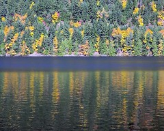 Water ~~~~ autumn in the lake :) (losy) Tags: water reflections autumn lake herbst spiegelung losyphotography