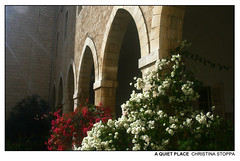 A Quiet Place (Kurokami) Tags: nazareth israel holy land pilgrim pilgrimage footsteps jesus christ christian religious religion spiritual israeli convent sister sisters nun nuns ruin ruins 1st 5th century tomb just man childhood home cloister arch arches flower flowers floral bougainvillea sun sunlight morning
