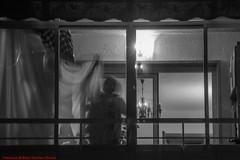 TROUGH MY WINDOW-Madrid (FRANCISCO DE BORJA SÁNCHEZ OSSORIO) Tags: window love light luz life lovely amor arrow autumn otoño flechazo focuspoint focus foco bokeh beauty belleza blancoynegro blackandwhite bw photo pasión passion shot madrid moment momento instant instante detalle detalles detail details desenfoque disparo delicado delicate divertido dof depthoffield exposure exposición enfoque encuadre framing timeexposure tiempodeexposición tripod temperaturadecolor trípode colour color composición composition colourtemperature nature naturaleza nice