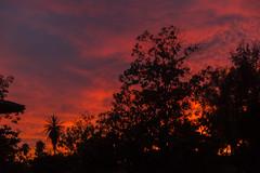 2017_12_10_la-sunset_29z