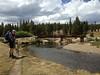 130817-01 (2013-08-21) - 0274 (scoryell) Tags: california tuolumnemeadows tuolumneriver yosemitenationalpark