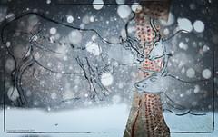 Reindeer greetings (AJ Mitchell) Tags: reindeer punctuation winter snow migration christmascard pentaxart christmas festivities gathering ajmitchell