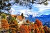 Deciduous Cypress ~~清境落羽松~魯媽媽2 (Estrella Chuang 心星) Tags: 清境 秋葉 落羽松 風景 心星 植物 天空 雲 estrella sky clouds