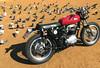 a65_IMG_6597 (ducktail964) Tags: bsa a65 lightning motorcycle taiwan scrambler custombike