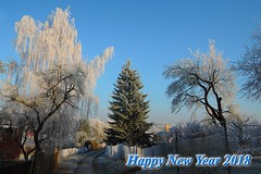 Happy New Year 2018 (ZdenHer) Tags: tree winter snow
