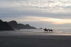 on the edge of the world (Claudia Künkel) Tags: oregon beach sunset meyersbeach horse rider lowtide