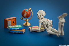 Where can we go in 2018? (EatMyBones) Tags: fgurine miniature poseskeleton rement skeleton toy toyphotography