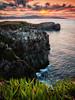 Azores (sfabisuk) Tags: azores sao miguel portugal sunset island