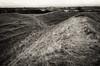 Warham camp entrance (AJ Mitchell) Tags: ironage norfolk hillfort prehistoric britishisles warham warehamcamp ditch ring entrance highcontrast pushed bw winter iceni multivallate