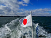 松島湾 (konomon) Tags: matsushima 松島