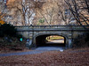 Dalehead Arch, Central Park (Web-Betty) Tags: nyc newyorkcity newyork centralpark city urban park daleheadarch bridge arch