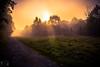 Nebel - Fog (fadenfloh) Tags: nebel ngc fog sonne sonnenstrahl foto photo photography maschendrahtzaun dunkel canon eos 60d bad kreuznach